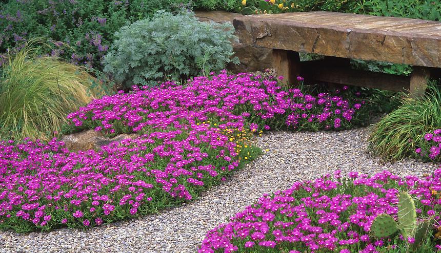 Kako napraviti vrtnu stazu?  Uredite Dom