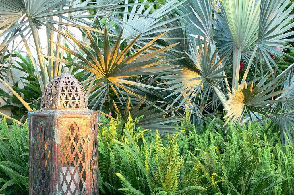 Ljetno održavanje vrta  Uredite Dom