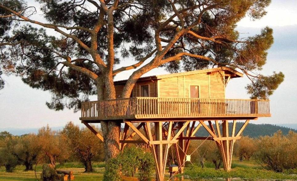 Najluksuznije kućice na drvetu  Uredite Dom