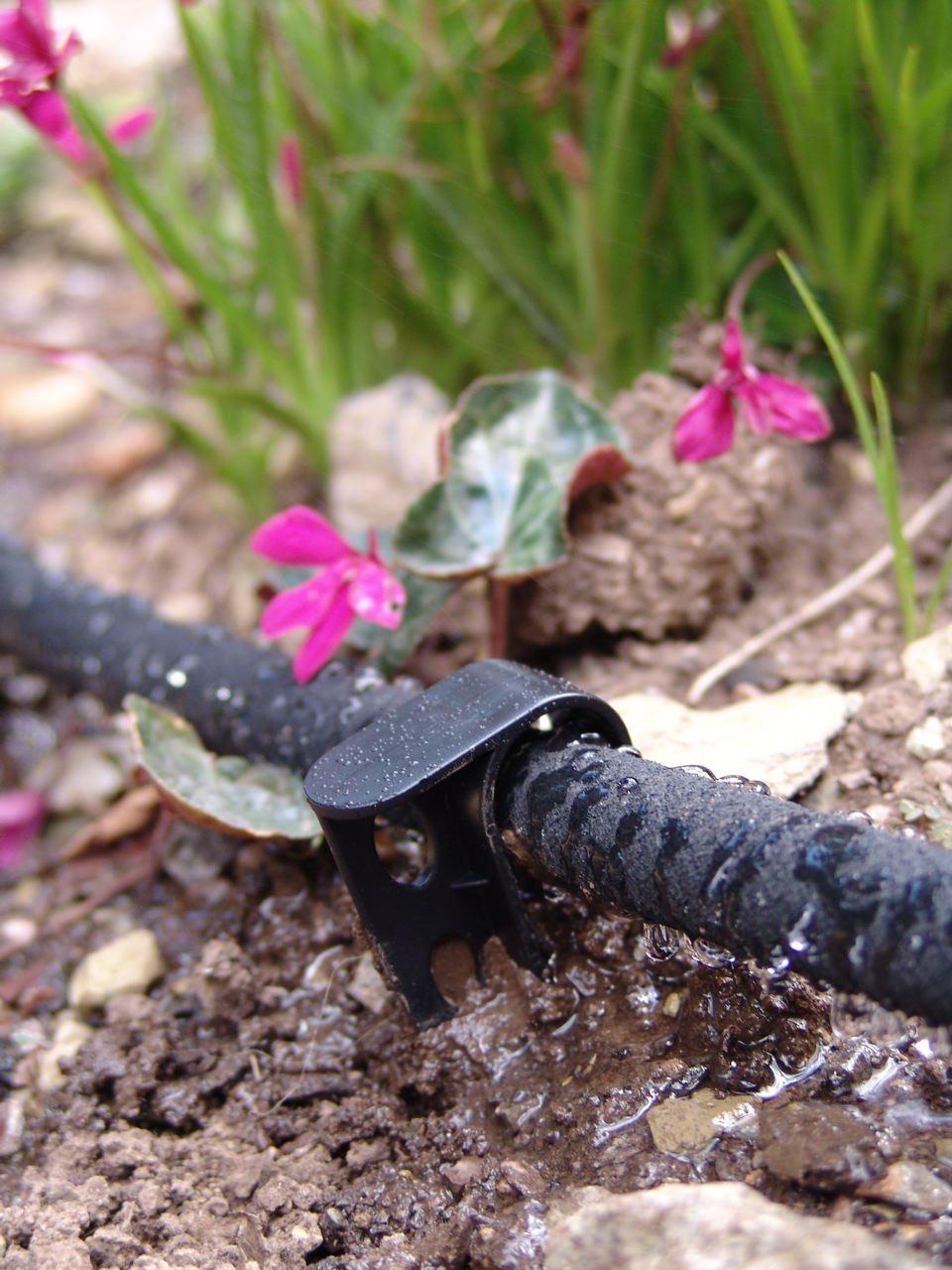 Vrtlarstvo za početnike – voda  Uredite Dom