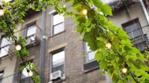 Slike jesenjeg uređenja balkona  Uredite Dom