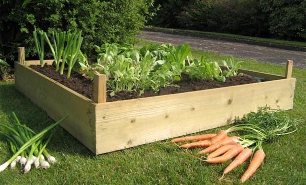 Uzdignute vrtne gredice: Povrće za lične potrebe  Uredite Dom