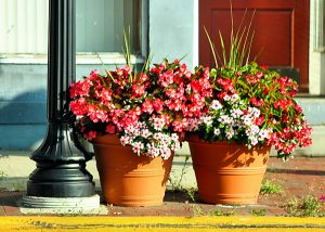 Podloga za cvijeće, zamjena za zemlju za cvijeće  Uredite Dom