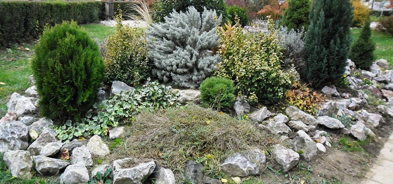 Biljke za kamenjar | Peatix