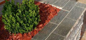 10 poslova koje trebate obaviti u vrtu ove jeseni  Uredite Dom
