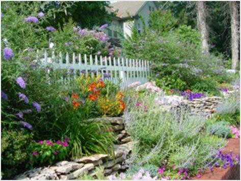 Выбираем цветущие декоративные кустарники для дачи фото гид