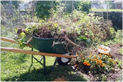 jesenje ciscenje vrta1