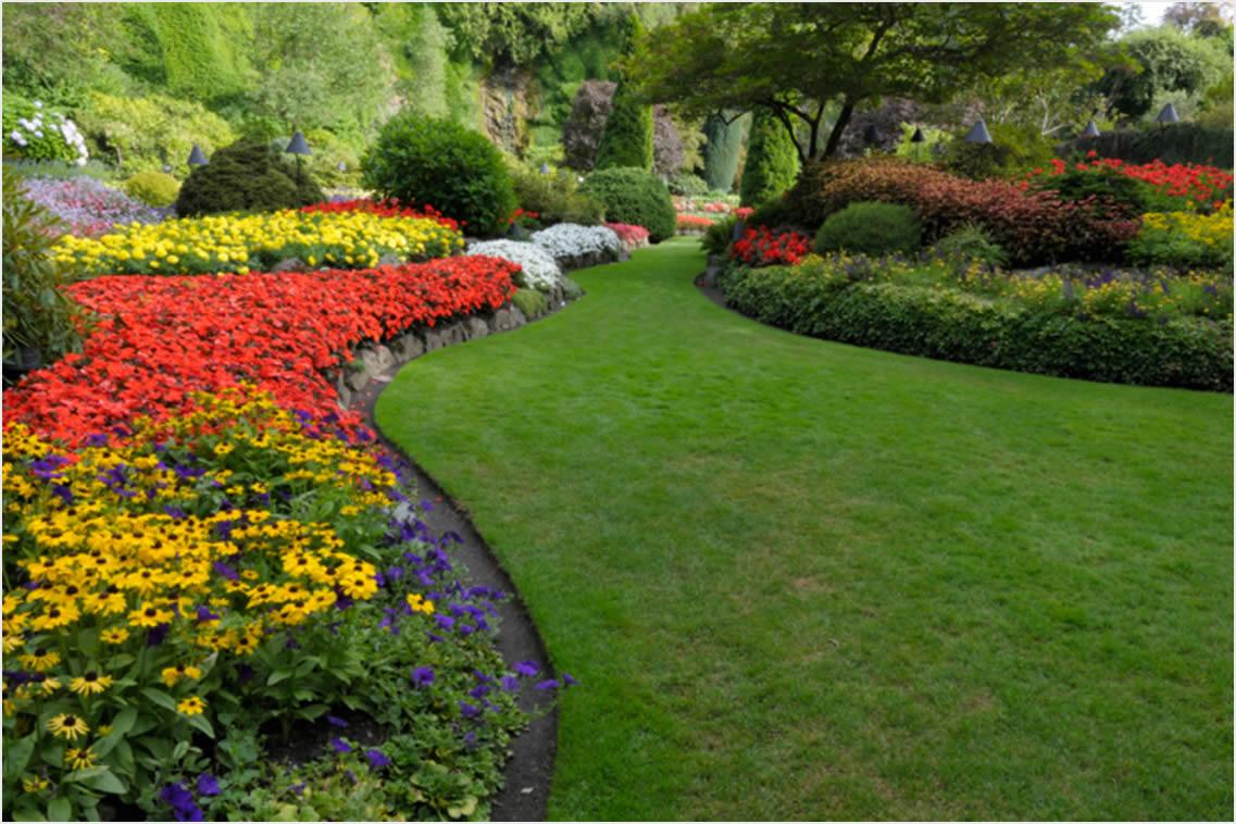 Uređenje Vrta  Uredite Dom